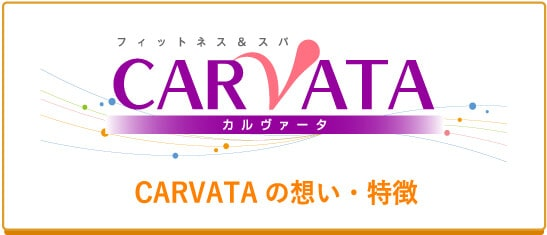CARVATAの想い・特徴