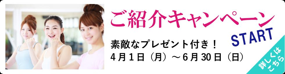 ご紹介キャンペーンSTART